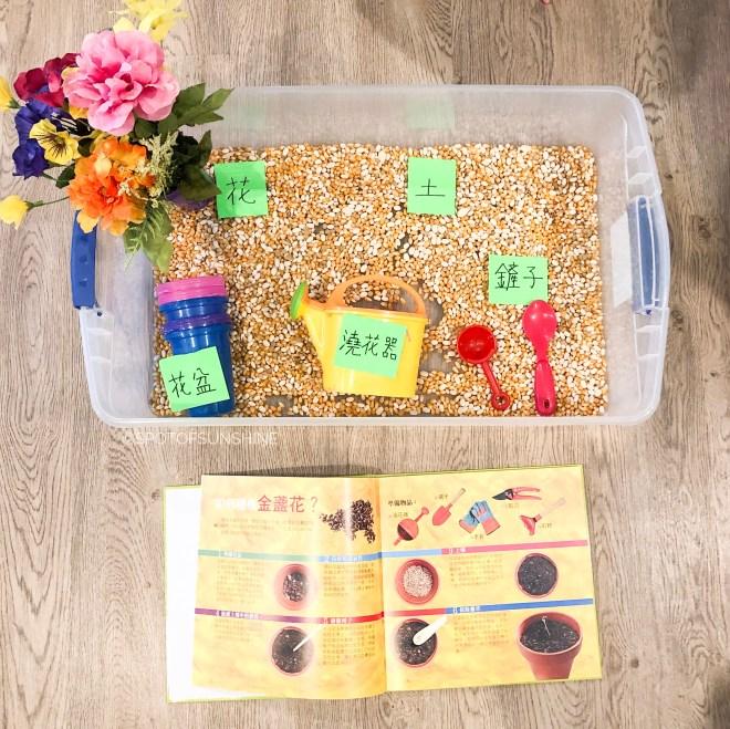 garden themed activities chinese