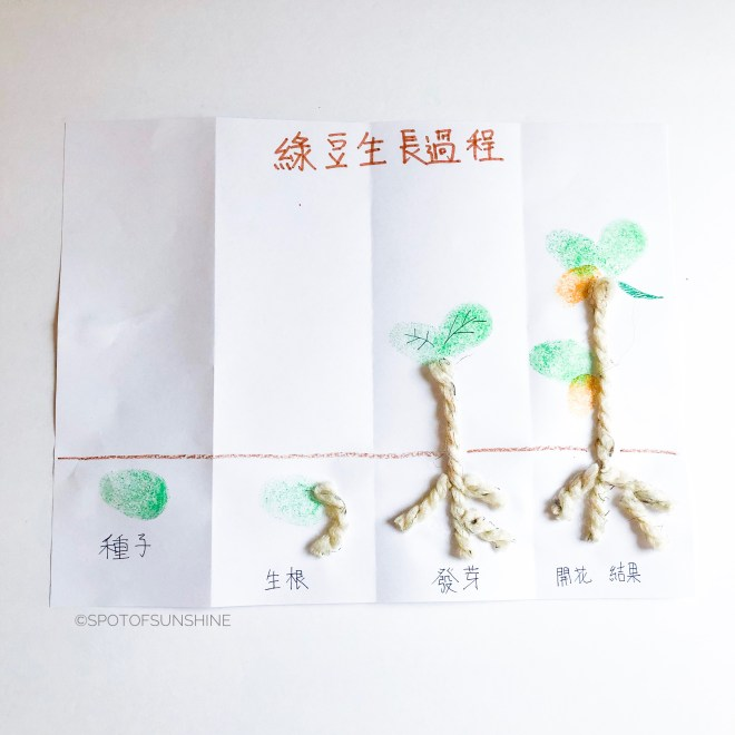媽媽買綠豆 Chinese learning activity