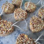 Bird Seed Ornaments {Guest Post}