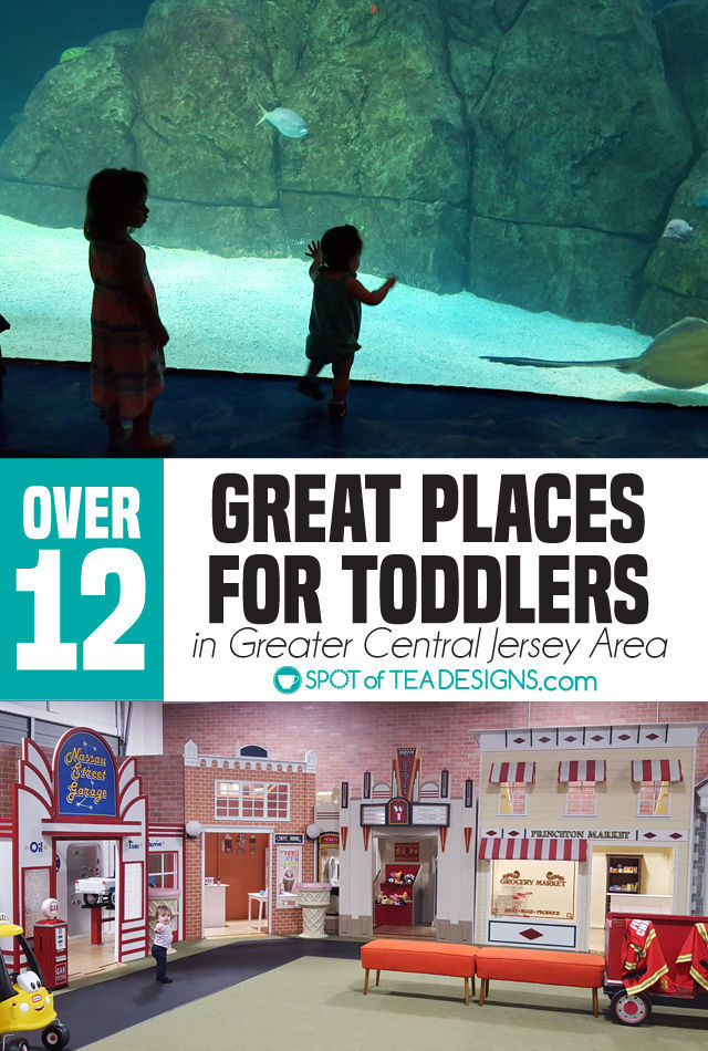 12+ great places for toddlers in the greatest central new jersey area. #toddlerlife #newjersey | spotofteadesigns.com