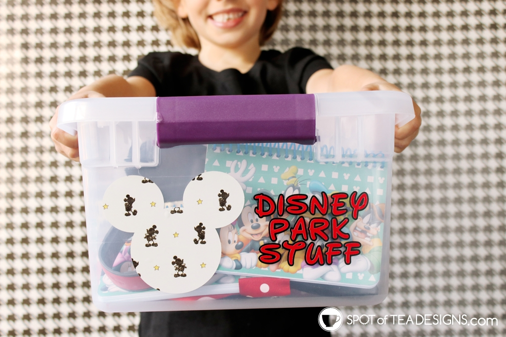 Cricut Disney Pattern Vinyl ideas - storage for your Disney Park stuff | spotofteadesigns.com