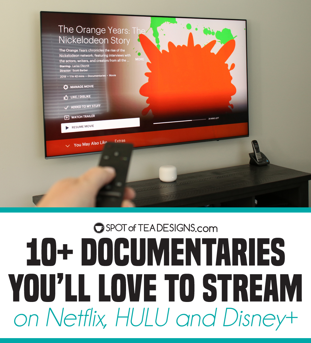 10+ Documentaries you'll Love to stream on Netflix, HULU and Disney+ | Spotofteadesigns.com