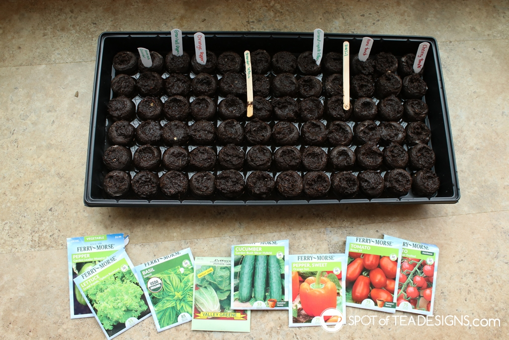 Our Backyard Vegetable Garden - Part 1: the plans | spotofteadesigns.com