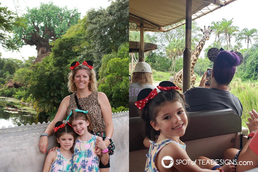 Disney World Itinerary - Animal Kingdom | spotofteadesigns.com
