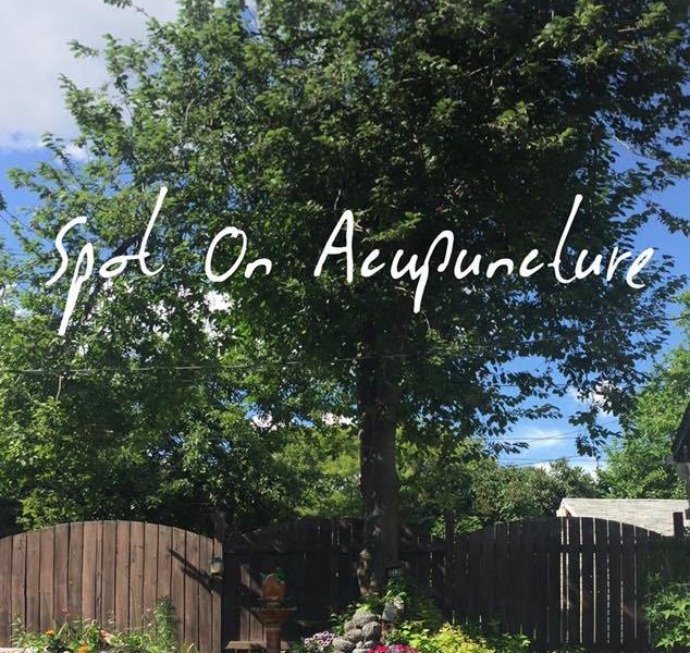 Image of large tree and garden for Spot on Acupuncture Edmonton Alberta specializing in musculoskeletal conditions. Direct billing for all Veterans Affairs Clients