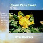 Evans Plus Evans