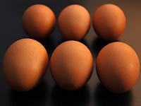 Cesta vejce k vám