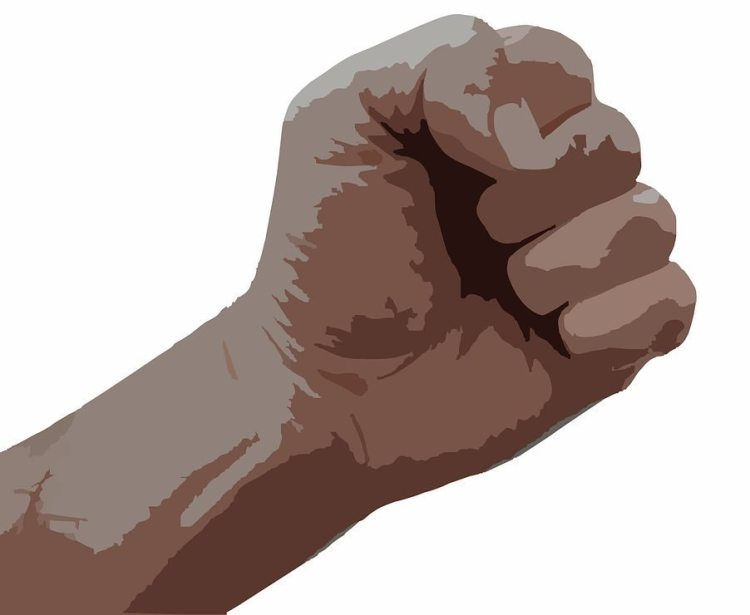 fist-295159_1280