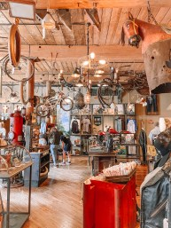 American Pickers Store - Nashville Travel Guide - www.spousesproutsme.com