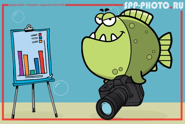 Как создать свой фотобизнес. Часть 2
