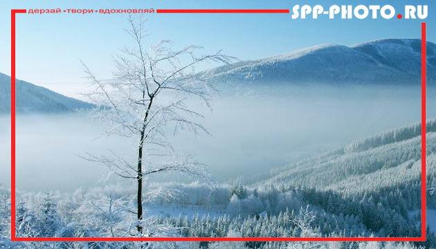 Как фотографировать зимой: советы и хитрости