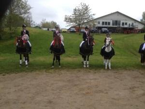 Pony hold D mesterskab
