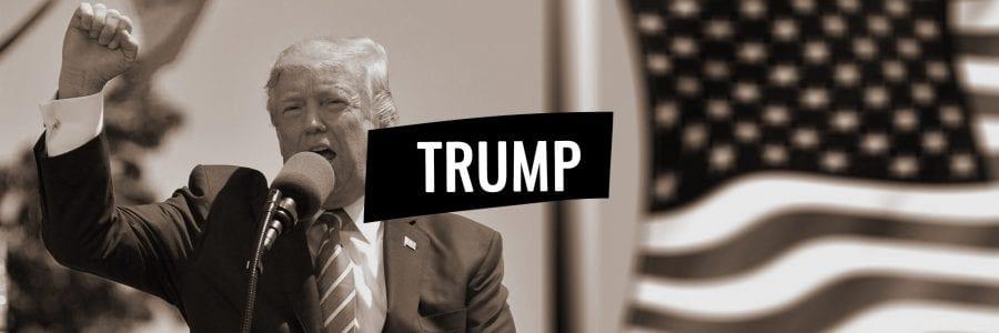 Die Sprache von Donald Trump