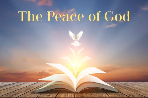 The pages of an opened book transform into a dove flying into the sunset. Photo represents the peace of God.