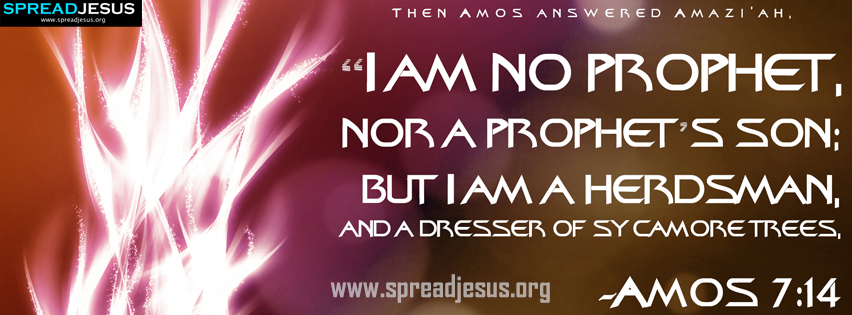 Wallpapers Of Christian Quotes Amos 7 14 Bible Quotes Hd Wallpapers Then Amos Answered