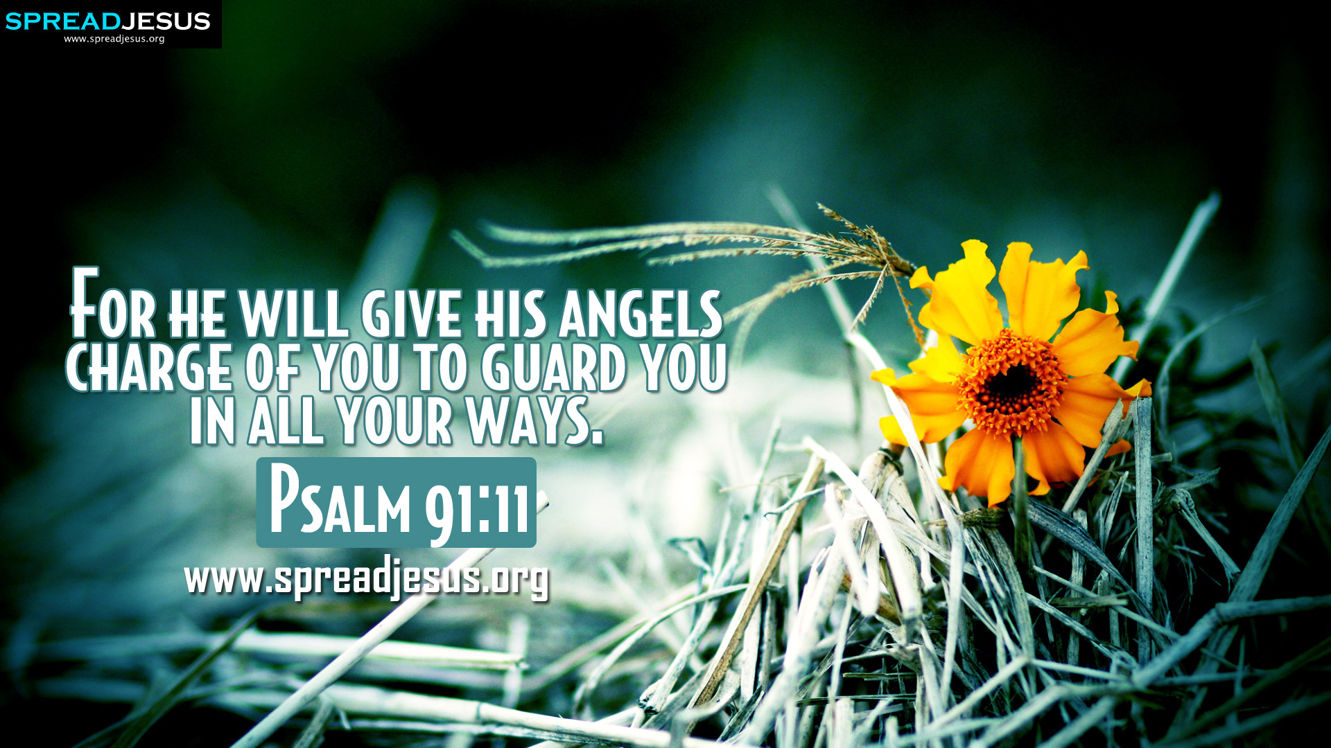 Encouraging Quotes Wallpaper Free Download Psalm 91 11 Bible Quotes Hd Wallpapers Free Download