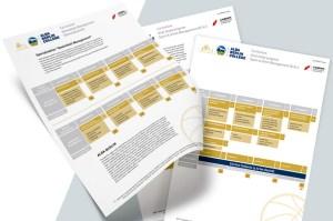BiTS Unternehmer-Hochschule, Curriculum, Curricula