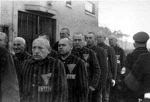 Homoseksuelle fanger i koncentrationslejren Sachsenhausen
