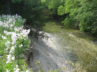Spring Creek Preserve 012