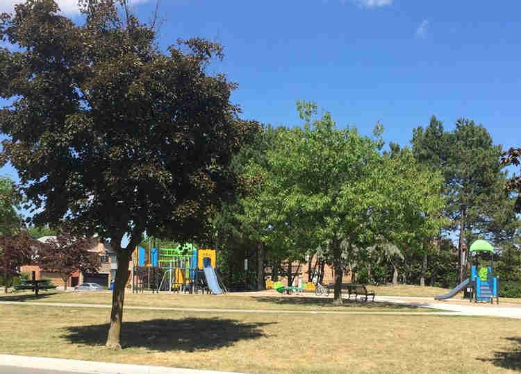 Playgrounds Committee Recommendations