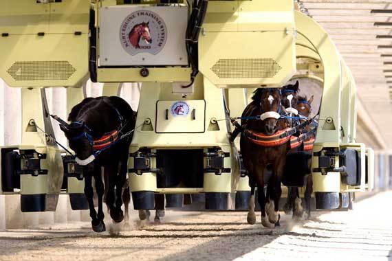 Horse Tech