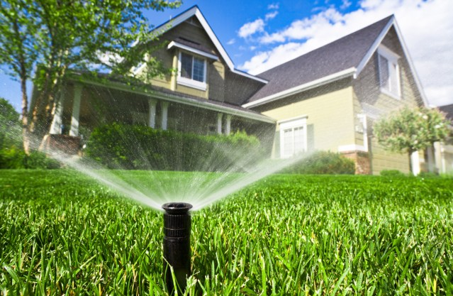 irrigation-koth2