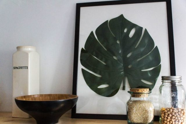diy-monstera-16-of-28