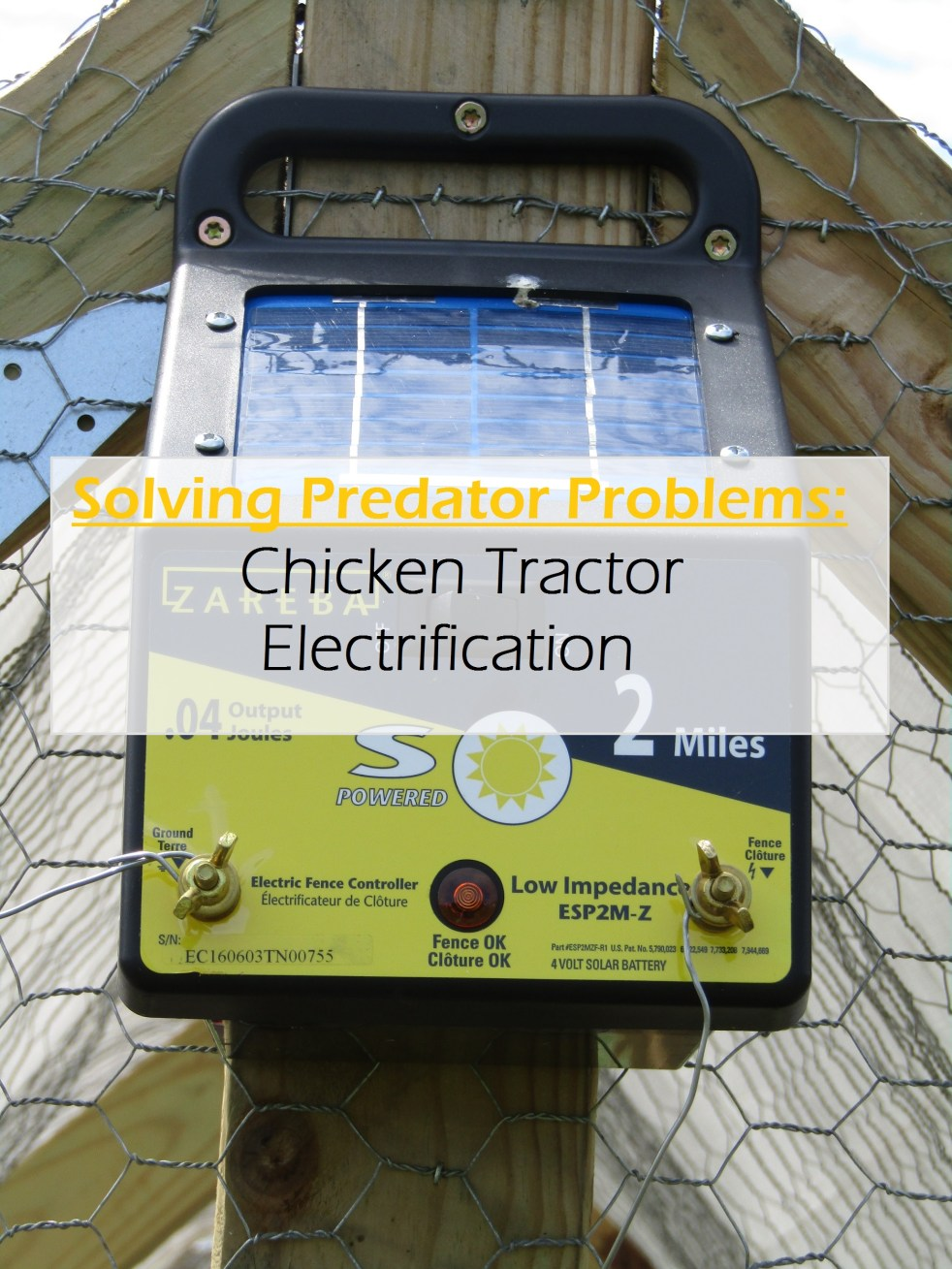 Solving Predator Problems: Chicken Tractor Electrification