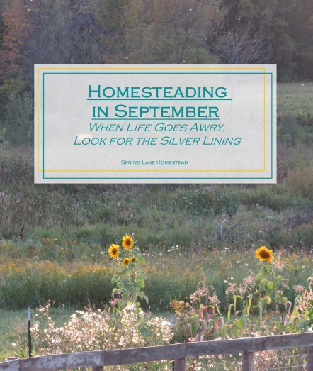 Homesteading in September