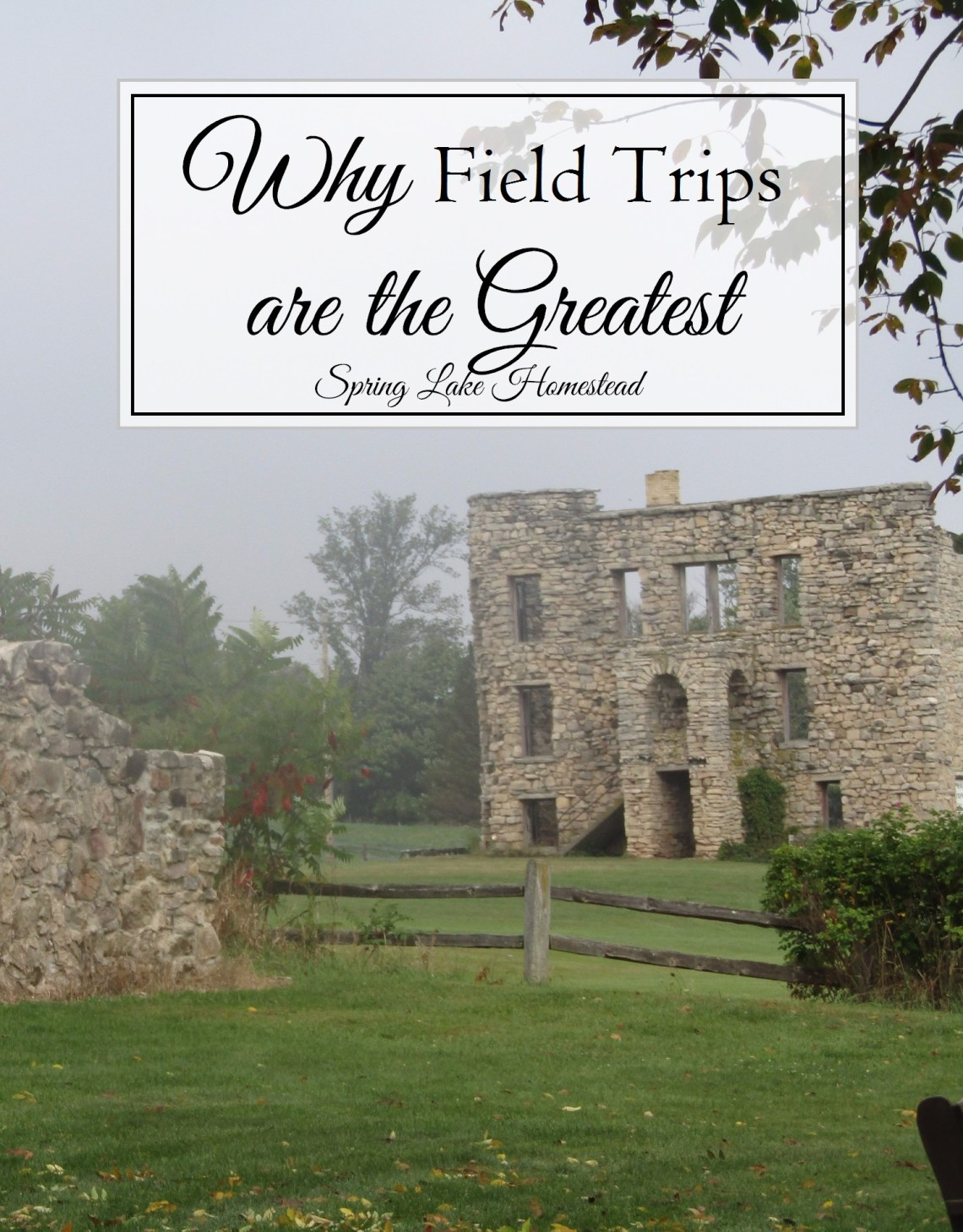 Why Field Trips are the Greatest