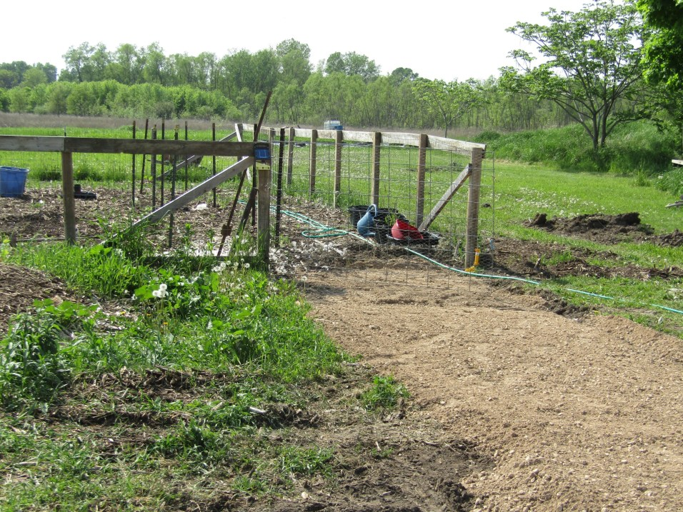 A new path leading up to the garden should making entering it much easier.