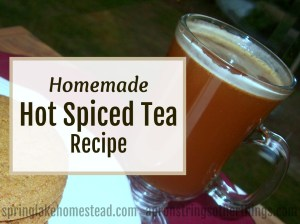 Aunt Cindy's Hot Spiced Tea Mix