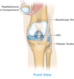 symptom knee pain on the front of the knee  [ 4837 x 4476 Pixel ]