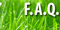 Frequenlty Asked Landscaping and Lawn Care questions answered by Colorado StoneWorks Landscaping
