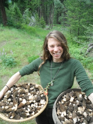 We came home from eastern WA with sixty pounds of morels. It was a great year.