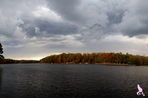 November 2014 by Springwolf © I Learned How To Make A Panorama This Year!