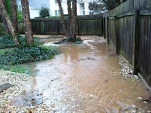 6 Ways to Determine if You Have Drainage Issues  Sprinkalawn