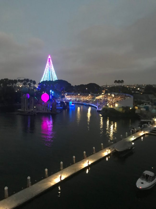 SeaWorld at night