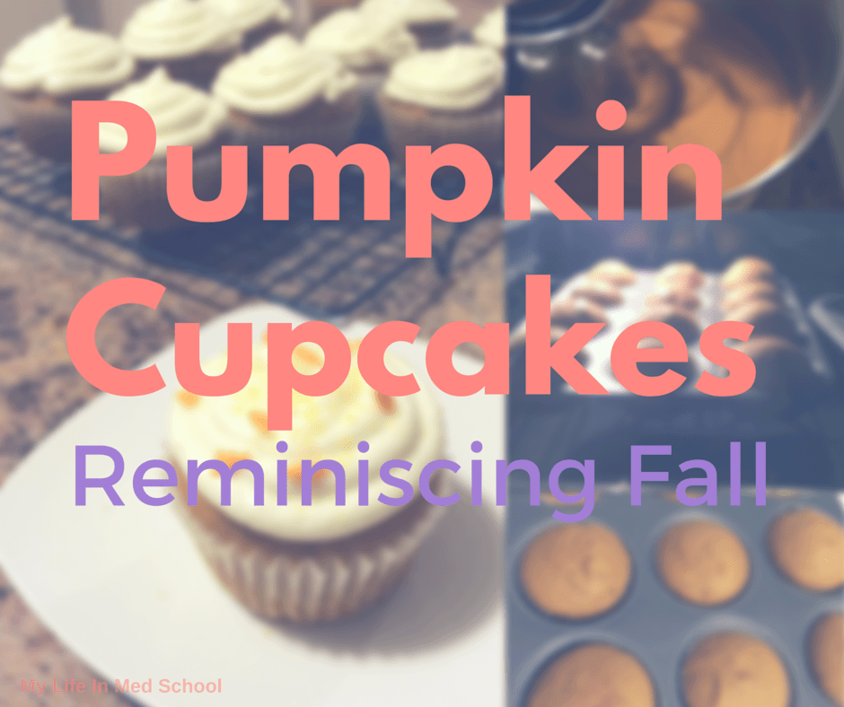 Pumpkin Cupcakes: Reminiscing Fall (Guest Post)