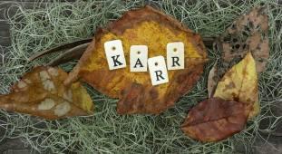 Pic 2 Karr