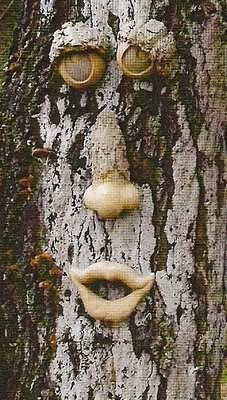 fairiewood_tree