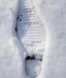 Field Trip Foto Friday: Snow Day!