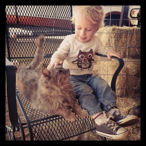 Baby's new best friend.  ♥ #barncat #Igtexas #cats #country