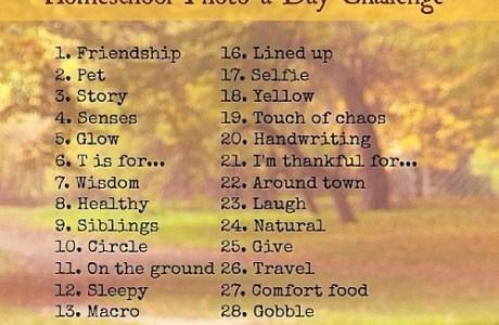 November Homeschool Photo a Day Instagram Challenge