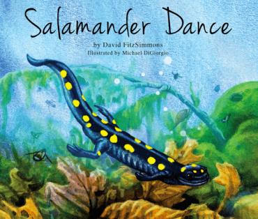 Salamander Dance