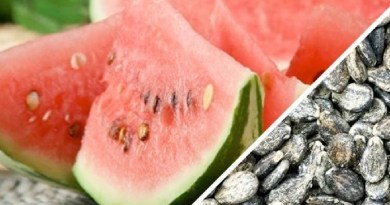 Watermelon Feature Image