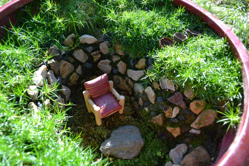 Miniature Gardening Ideas Sprout Landscape & Garden Design