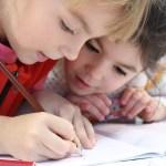 小学校にて脳の構造についての勉強
