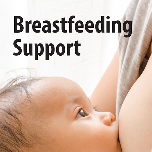 Breastfeeding Support brochure