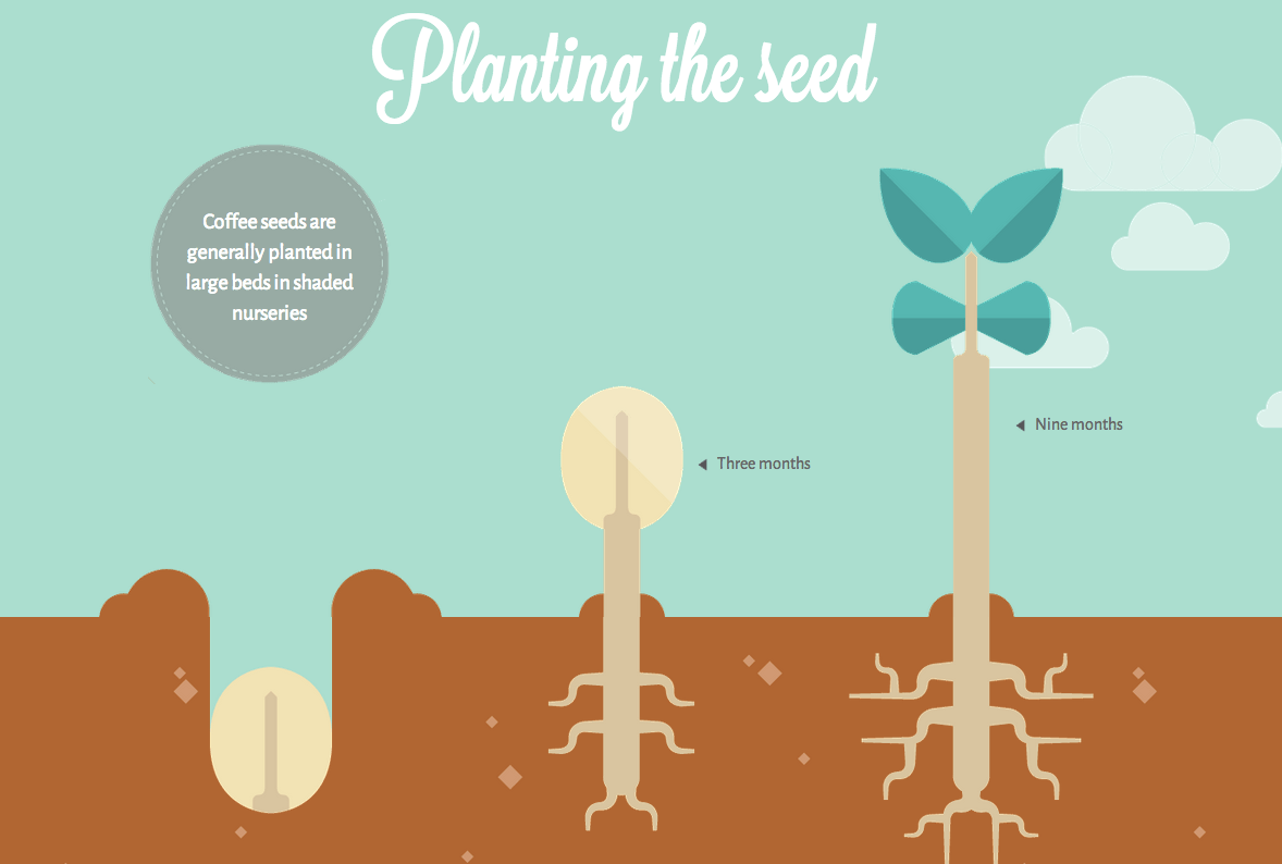 A Beautiful Interactive Look At Your Coffees Journey